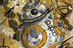 BB8canvas-print-20x20_SM
